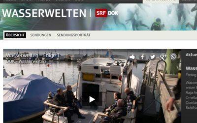 DOK-Wasserwelten: Die Archeodivers auf SRF